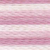 Varigated Lilac - 2349