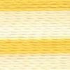 Varigated Maize - 2357