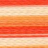 Varigated Orange - 2359