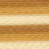 Varigated Gold - 2362