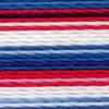 Varigated Flag - 2364